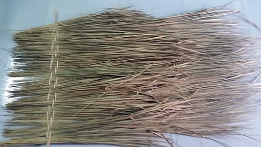 ETR-10, Tropical Grass Roof Thatching